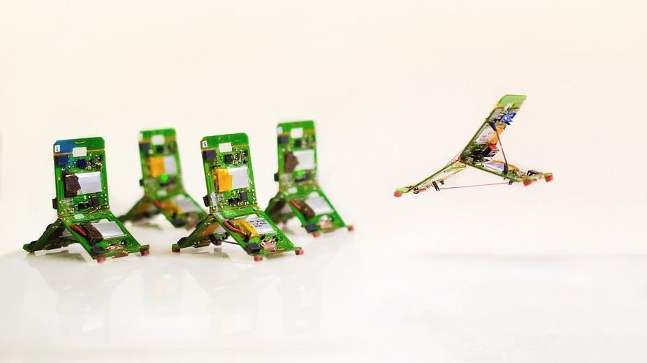 Jumping ant robots use teamwork to overcome obstacles
